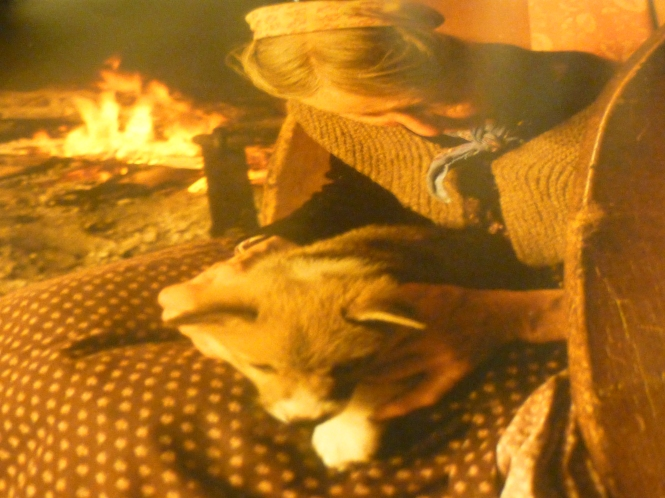 Tasha Tudor sitting by the fire wearing her hand knit shawl holding a corgi puppyTasha Tudor sitting by the fire wearing her hand knit shawl holding a corgi puppyTasha Tudor sitting by the fire wearing her hand knit shawl holding a corgi puppy
