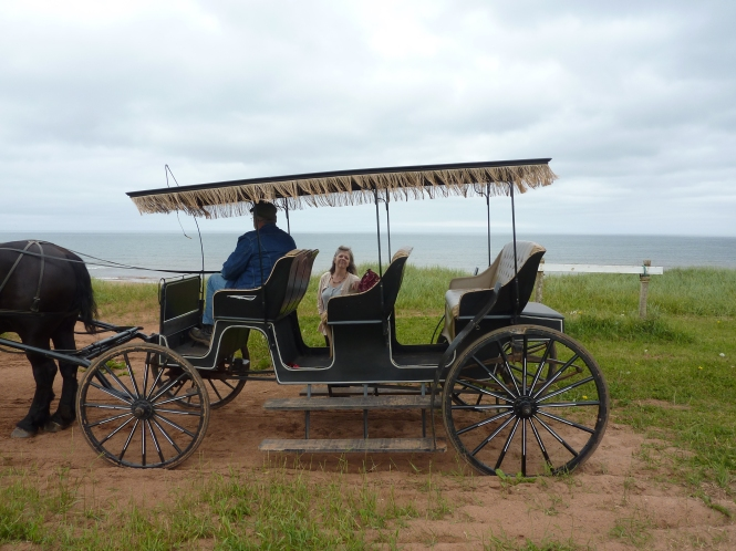 Silver Bush park corner Anne Of Green gables Museum Prince Edward Island 150 celebration seashores of Prince Edward Island Mathews Barn and carriage ride Lucy Maud Mongonery