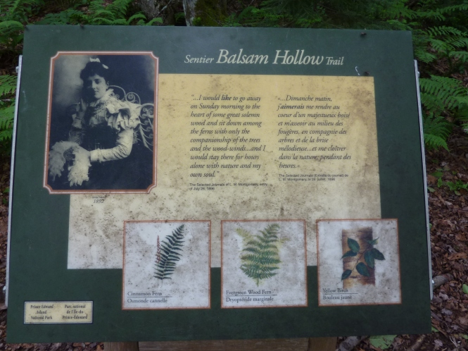 Lucy Maud Montgomery Anne of Green Gables Quotes Prince Edward Island 150 yr celebration Lovers lane Acadian Forest