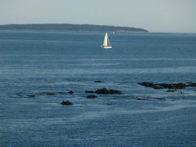 sailing in Maine Seashore Vacationing in Maine Black woods Acaida Park Path to the sea