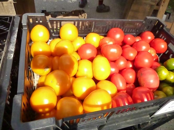 Farmers market Organic produce fall is nigh fall harvest