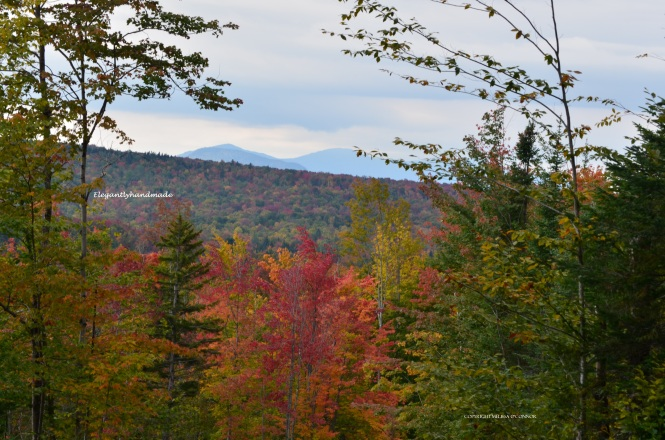 Beauty that moves fall in yankee states Autumn North East Kingdom Vermont Traveling in new england states