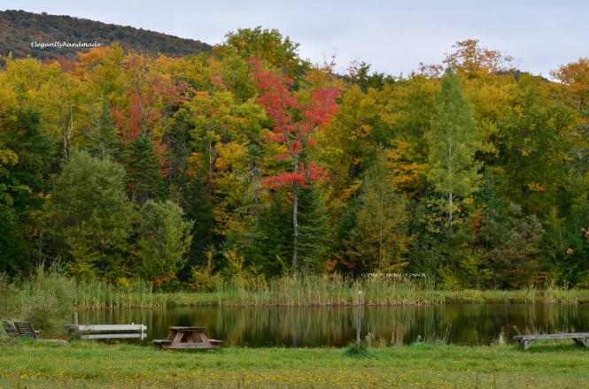 The pond Vermont Vermont Fall Autumnal Color New England Yankee states
