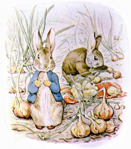 Peter Rabbits Vegetable soup Another Perfect Day with Beatrix Potter The world of Peter rabbit and friends Hygge day tea time hygge in the kitchen hygge Knitting Tasha Tudor style cottage shawl knitting pattern
