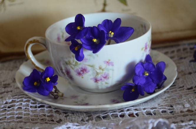 Tea cup Tuesday Theodore Haviland Limoges France Tea cup Fine china Lessons from Robert Montgomery Prince Edward Island Lucy Muad Montgomery Anne of Green Gables Tea cup Collections